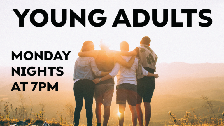 young adults web